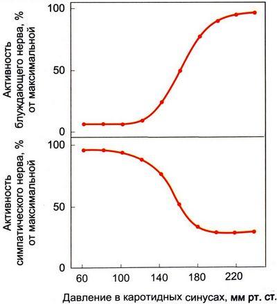 таблетки снижающие холестерин и очищающие сосуды