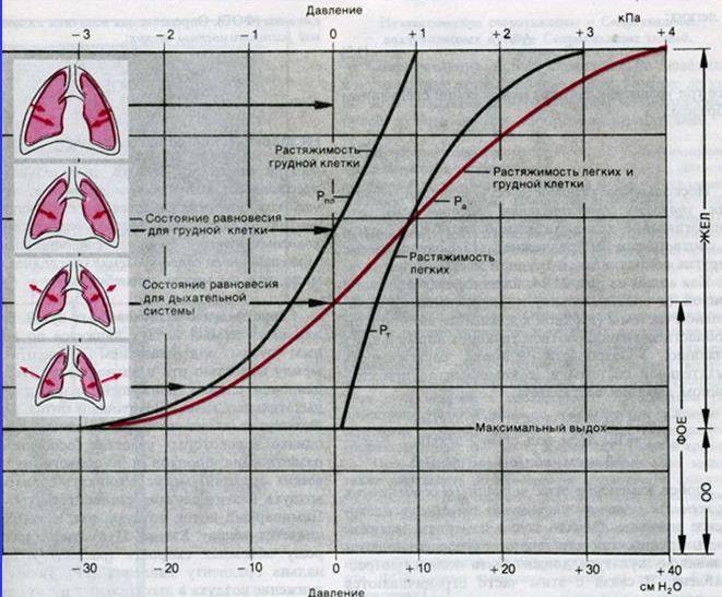 Химикпро раствор гидроксида натрия ph раствора